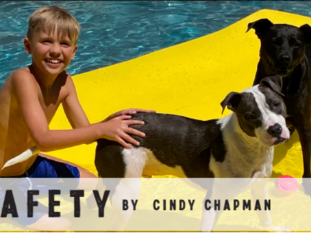 Pet Safety 76226
