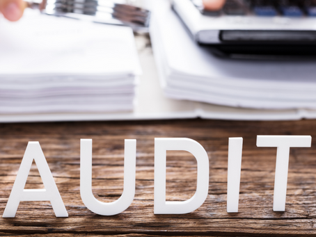 Are You Setting Yourself Up For An Audit?