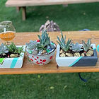 Succulent Planter Craft Creations Crafticity