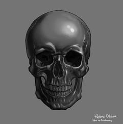skull work j.jpg