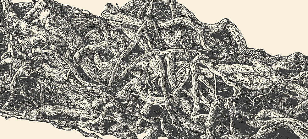 Lianas Wood Drawing.jpg