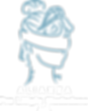 Alianza-Pro-Litigio-Ciudadano-AC-V1.3-Tr