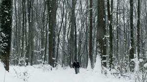 Schnee glöck chen