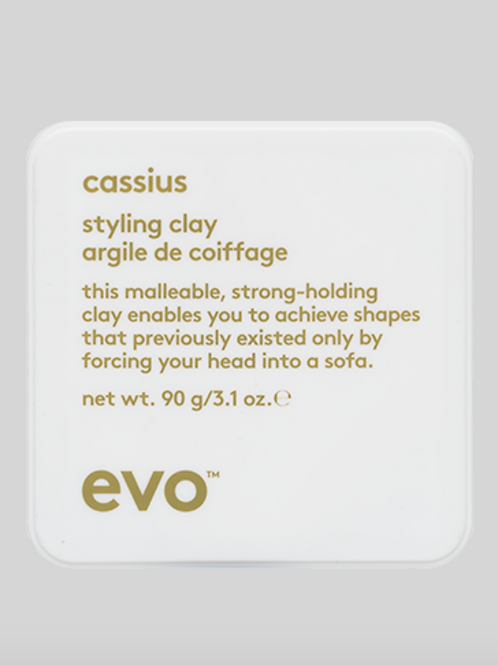 cassius - styling clay