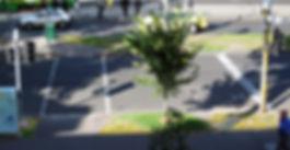 Paths_1.jpg