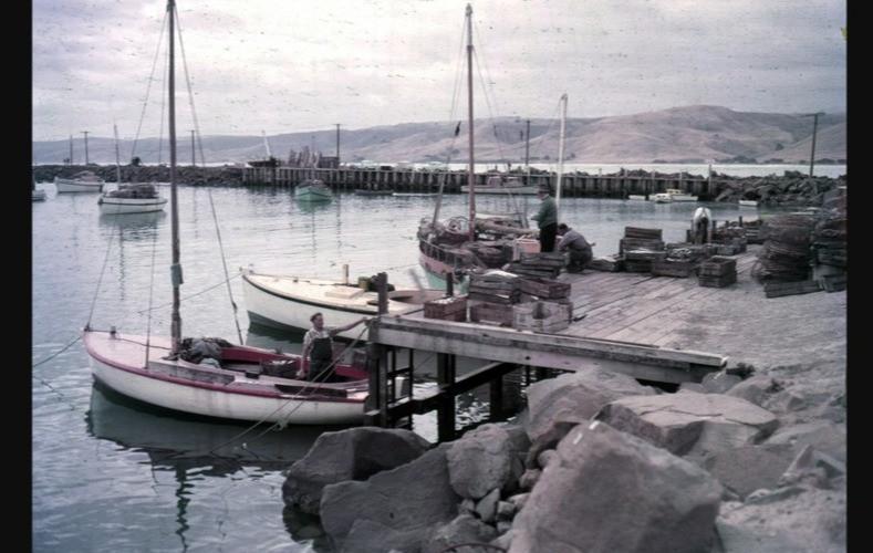 Apollo Bay Harbour-1950s