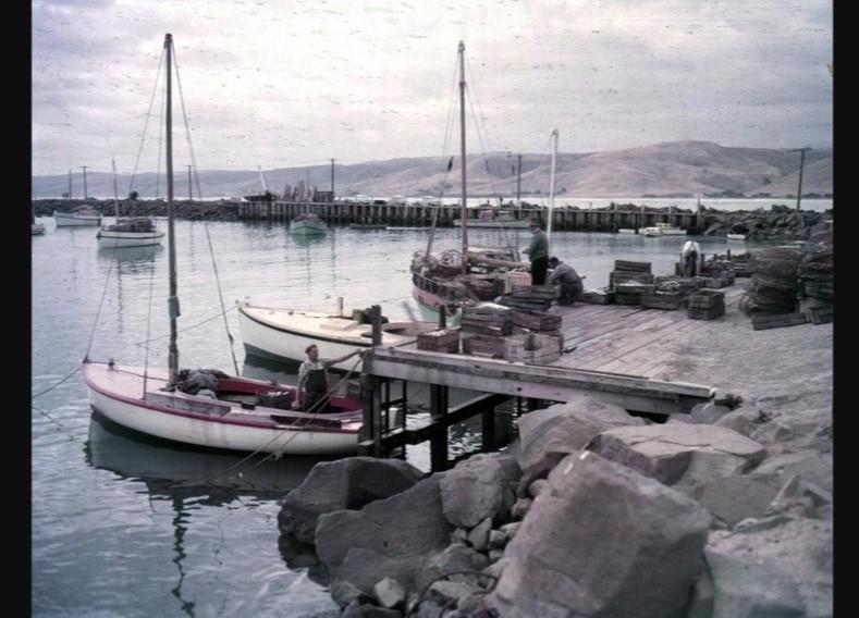 Apollo Bay harbour - circa 1950s