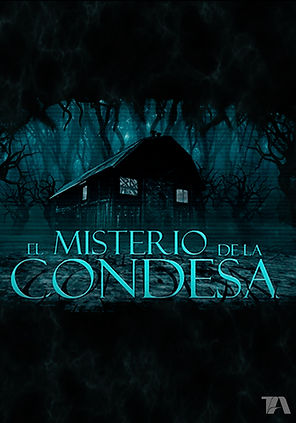 CONDESA AFICHE.jpg