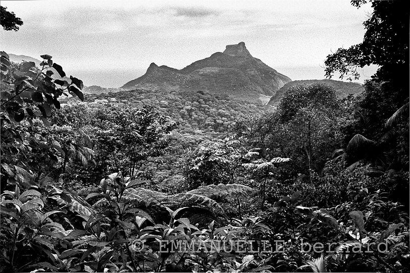 Pedra da Gavea, Floresta da Tijuca , 2008