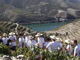 ivete sangalo program porto portugal