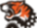 Bionic Tigers Logo