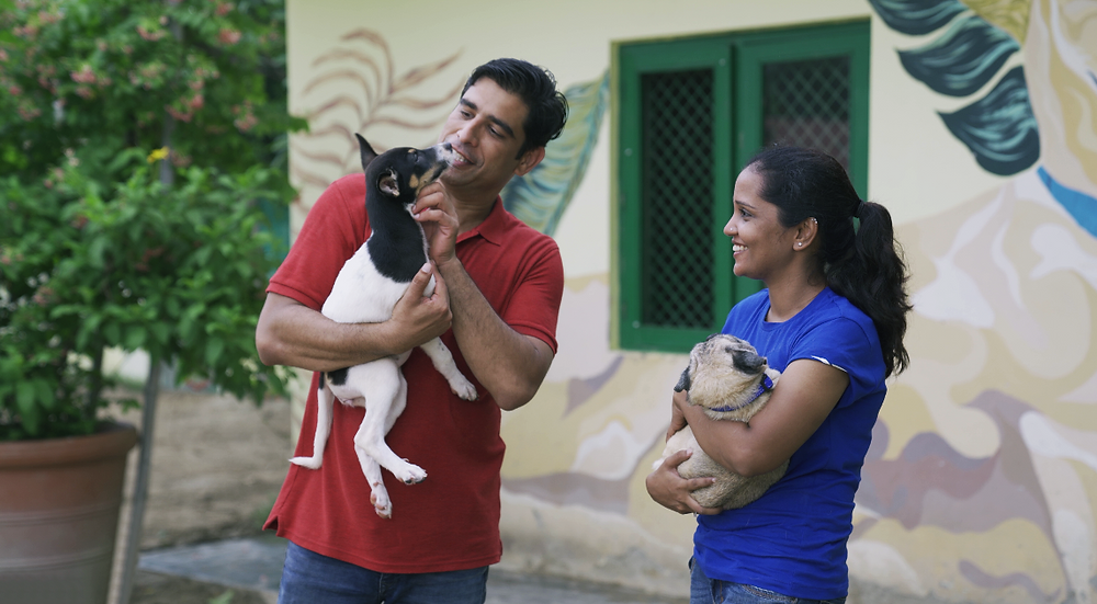 ANIMAL PLANET CELEBRATES UNSUNG HEROES WORKING FOR THE CAUSE OF ANIMAL WELFARE WITH A NEW SHORT-FORM SERIES 'ANIMAL PLANET AMBASSADORS'