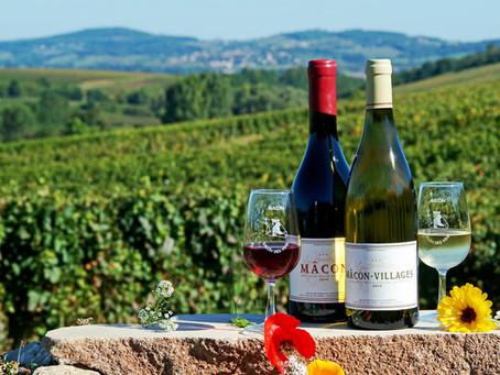 Sabores do Mundo: Borgonha