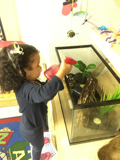 Taking care of the snails.JPG