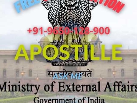 Apostille Consultation