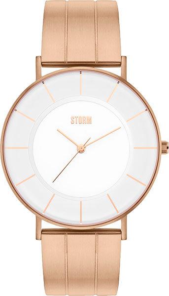 Часы Наручные STORM 47362/RG