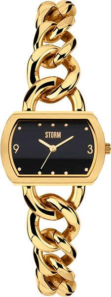 Часы Наручные STORM 47216/GD