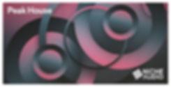 NICHE_Samples_Sounds-PEAK-HOUSE-1000-X-5