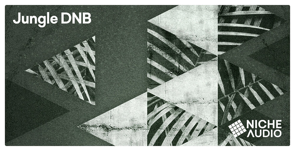 NICHE_Samples_Sounds-JUNGLE-DNB-1000-X-5