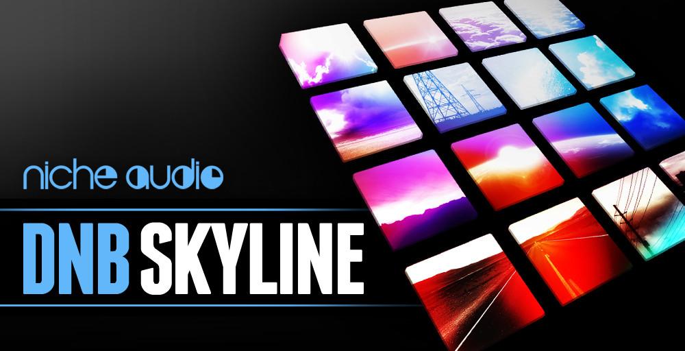 NICHE DNB SKYLINE 1000 X 512.jpg
