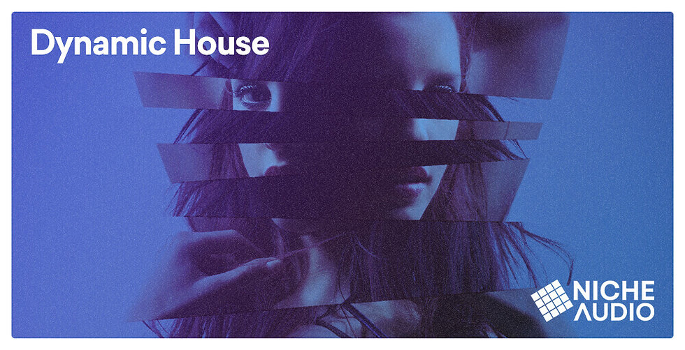 NICHE_Samples_Sounds-DYNAMIC-HOUSE-1000-