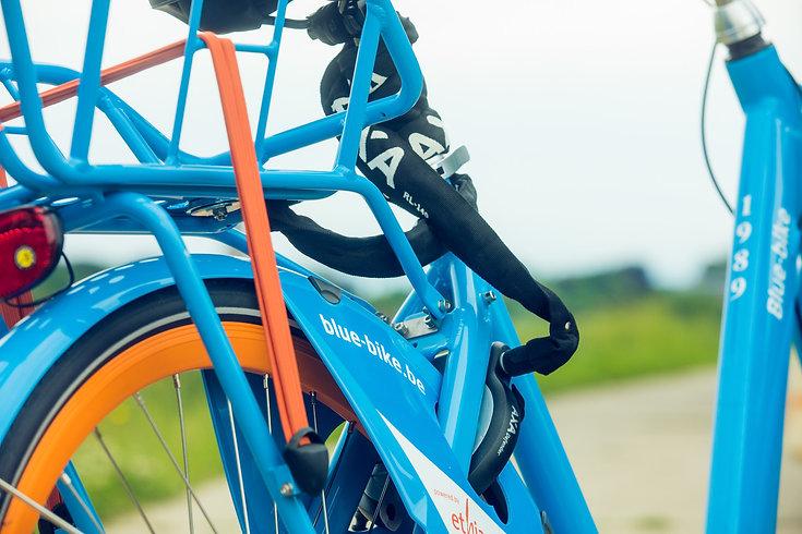 bluebike-rental.jpg