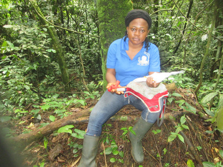 International Women and Girls in Science Day: A Conversation with Gwendoline Angwa