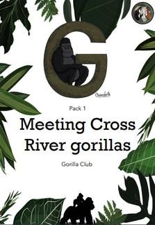 Meeting Cross River Gorillas