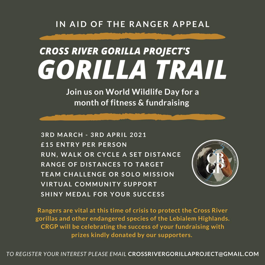 Gorilla Trail