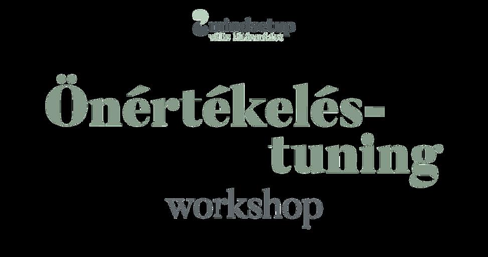 Mindsetup_web_wix_fejlec_Onertekeles-tun