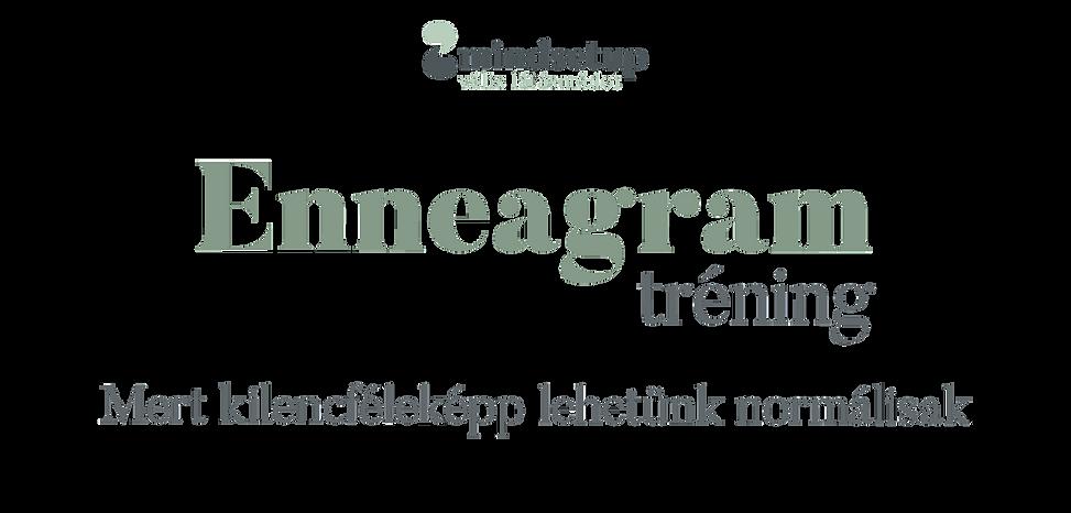 Mindsetup_web_wix_fejlec_Enneagram.png