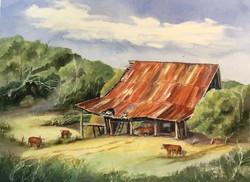 Rural Classic