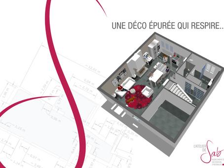 Work in progress pour la transformation d'un Rez de Chaussée...