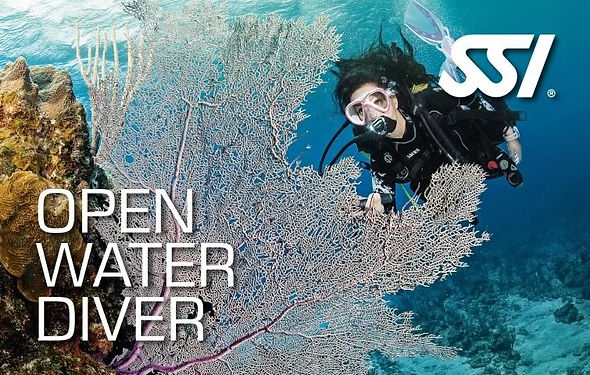 Openwater.jpg