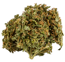 HGH-Weed-Cannabis-Nug-Flower.png