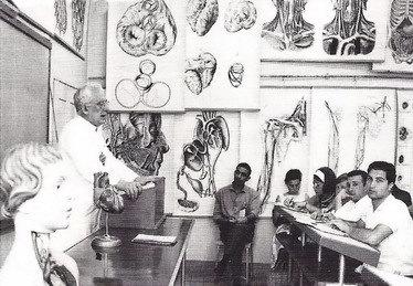 Anatomievorlesung.jpg