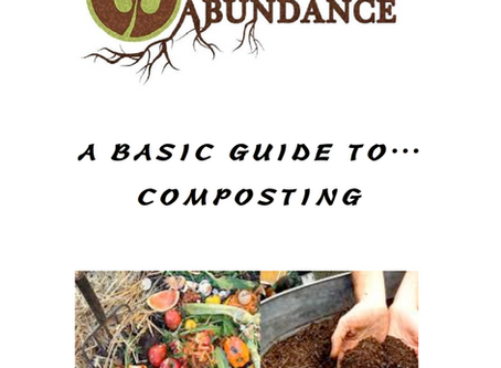 A Basic Guide To Composting