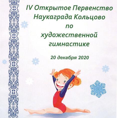 2020-12-24_125251_page-0001_edited.jpg