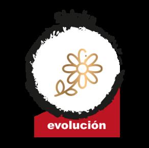 M4SHINKA_Evolucion2.png