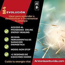 M4evolucion.png