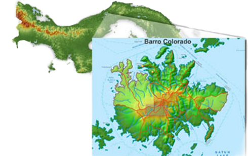 Barro%20Colorado%20Island_edited.png