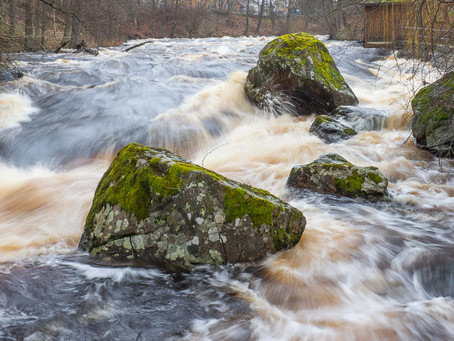 Högt vattenstånd i Mörrumsån