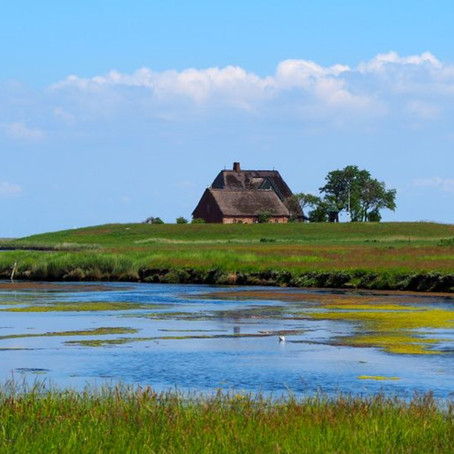 Nordfriesland vom 14.-22.05.2022: Weite, Wein und Wattenmeer