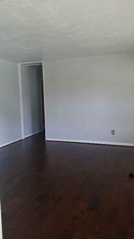 Gray walls, dark hardwood floors