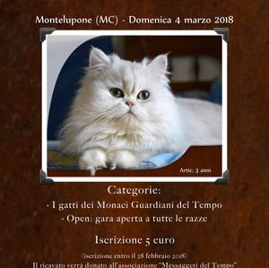 I Monaci Guardiani del Tempo organizzano in sede un grande evento. Aperto a tutti i Felini.