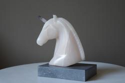 Eenhoorn Pegasus