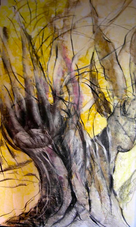 Anna Napoli, Olive Trunk 1, pastel painting on paper, cm 90x60 in 35x23
