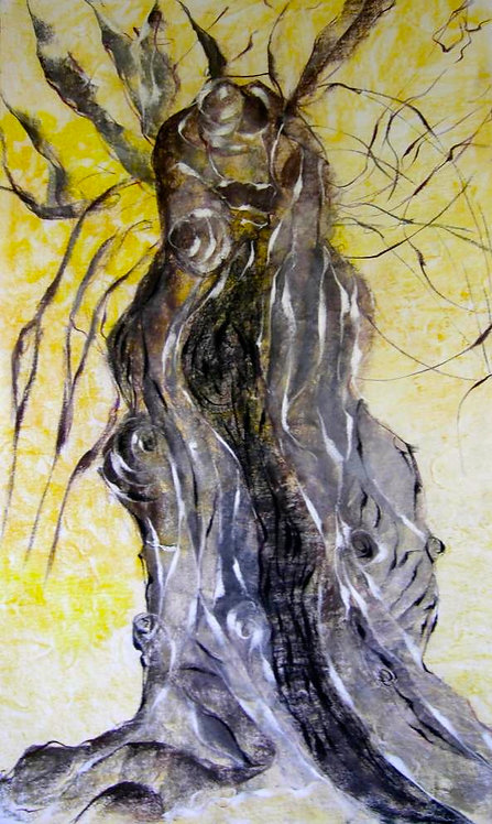 Anna Napoli, Olive Trunk 2, pastel painting on paper, cm 90x60 in 35x23