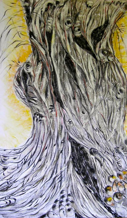 Anna Napoli, Olive Trunk 7, pastel painting on paper, cm 90x60 in 35x23