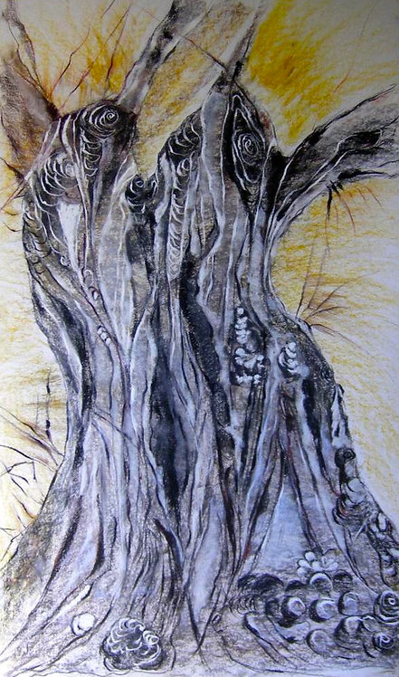 Anna Napoli, Olive Trunk 6, pastel painting, cm 90x60 in 35x23